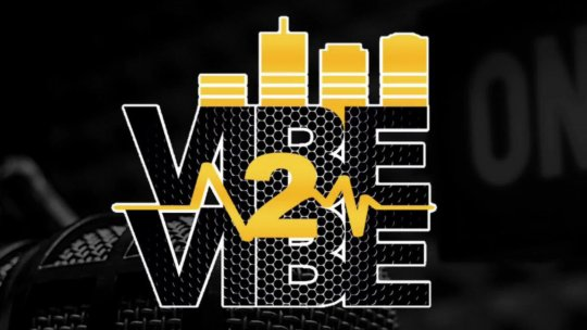 Vibe2Vibe - Julia S. Powell